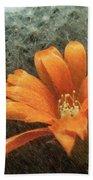 Rebutia Muscula Bright Orange Flower Beach Towel by Heiko Koehrer-Wagner