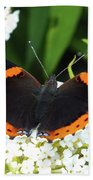 Red Admiral - Topwings Beach Sheet