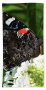 Red Admiral - Underside Beach Towel
