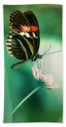 Red And Black Butterfly On White Flower Beach Towel