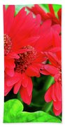 Red And Green Beach Towel