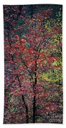 Red And Yellow Leaves Abstract Vertical Number 1 Beach Towel