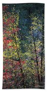 Red And Yellow Leaves Abstract Vertical Number 2 Beach Towel