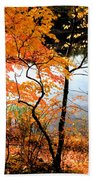 Red Autumn Leaves 5 Beach Towel