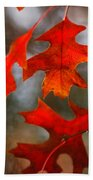 Red Autumn Leaves Beach Towel