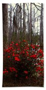 Red Azaleas In The Swamp Beach Towel