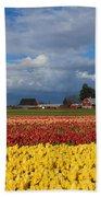 Red Barn Tulip Farm Beach Towel