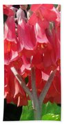 Red Bell Flowers. Sunny Spring Beach Towel
