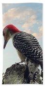 Red-bellied Woodpecker - Tree Top Beach Towel