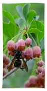 Red Bells And Wasp Beach Towel