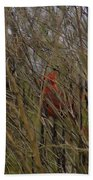 Red Bird Beach Towel
