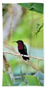 Red Breasted Humming Bird  Beach Sheet