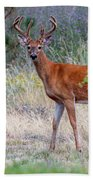 Red Bucks 1 Beach Sheet