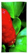 Red Button Ginger Beach Towel