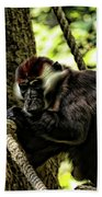 Red-capped Mangabey Beach Towel