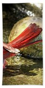 Red Cardinal Bathing Beach Towel