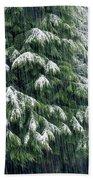 Red Cedar And Snow Beach Towel
