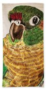 Green Cheeked Conure Beach Towel