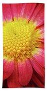 Red Chrysanthemum Beach Towel