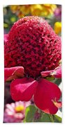 Red Cone Flower Beach Towel