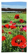 Red Corn Poppies At The Fence Beach Towel