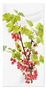 Red Currants Beach Towel