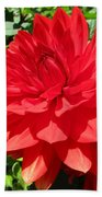 Red Dahlia In The Green Beach Towel