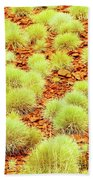 Red Earth And Spinifex 2am-111716 Beach Towel