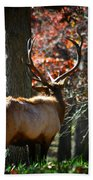 Red Elk Beach Towel