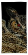 Red Eyed Mama And Baby Horned Owls Beach Towel