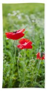 Red Field Poppies Beach Towel