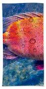 Red Fish Blue Fish Beach Towel