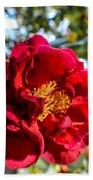 Red Flower Beach Towel