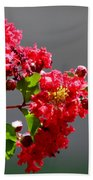 Red Flowers After The Rain Beach Towel
