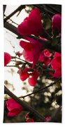 Red Flowers At Sunset Beach Towel