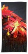 Red Flowers Beach Towel