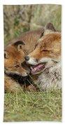 Red Fox Cub Love Beach Towel