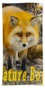 Red Fox Nature Boy Beach Towel