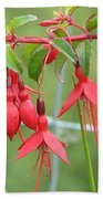 Red Fresia Beach Towel