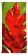 Red Ginger Bud After Rainfall Beach Towel