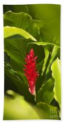 Red Ginger Flower Beach Towel