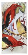 Red Hawaiian Honeycreeper Beach Towel