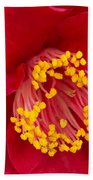 Red Camellia Beach Towel