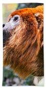 Red Howler Monkey Alpha Male Beach Towel