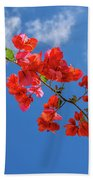 Red In The Sky Beach Towel
