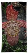 Red Lady Slipper Beach Towel