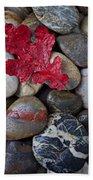 Red Leaf Wet Stones Beach Towel by Garry Gay
