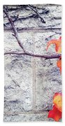 Red Leaves Growing By The Wall. Autumn Beach Towel
