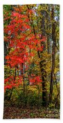 Red Leaves Of Autumn Beach Towel