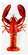 Red Lobster - Full Body Seafood Art Beach Sheet